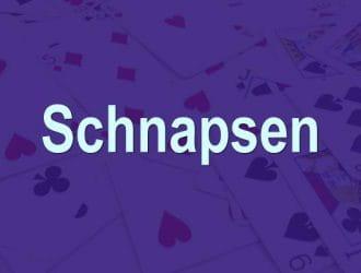 Kartenspiel Schnapsen